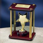 Brass Star Enclosed in Glass Box Star Awards